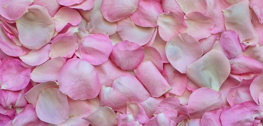 ottobre mese in rosa
